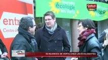 50 nuances de verts chez les écologistes