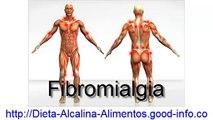 Dieta Alcalina Alimentos, Recetas Alimentos Alcalinos, Dieta Proteica, La Mejor Dieta Para Adelgazar