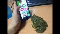 HAHAHA ! Crazy frog ... à voir jusqu'au bout !