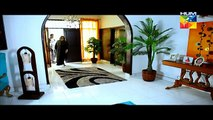 Sartaj Mera Tu Raaj Mera Episode 11 on Hum Tv in High Quality 11th March 2015 - DramasOnline