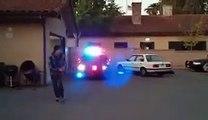 Ce bébé chien policier a un grand avenir dans la police!