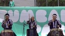 Matsuri Japanese Festival Part 2 of 5, Sydney  13 Nov 2014