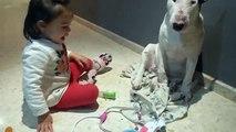 Cette apprentie vétérinaire est trop mignonne !