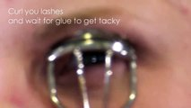 The Best False Eyelash Lash or Lashes Makeup Tutorial