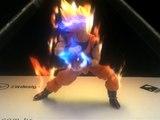 Goku en Hologramme  !