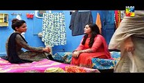 Digest Writer Episode 20 Full on Hum Tv Digest Writer Drama