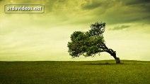 Suno JANA! Judai mout hoti hay - Full Video Poetry - Sad Urdu Poetry in HD