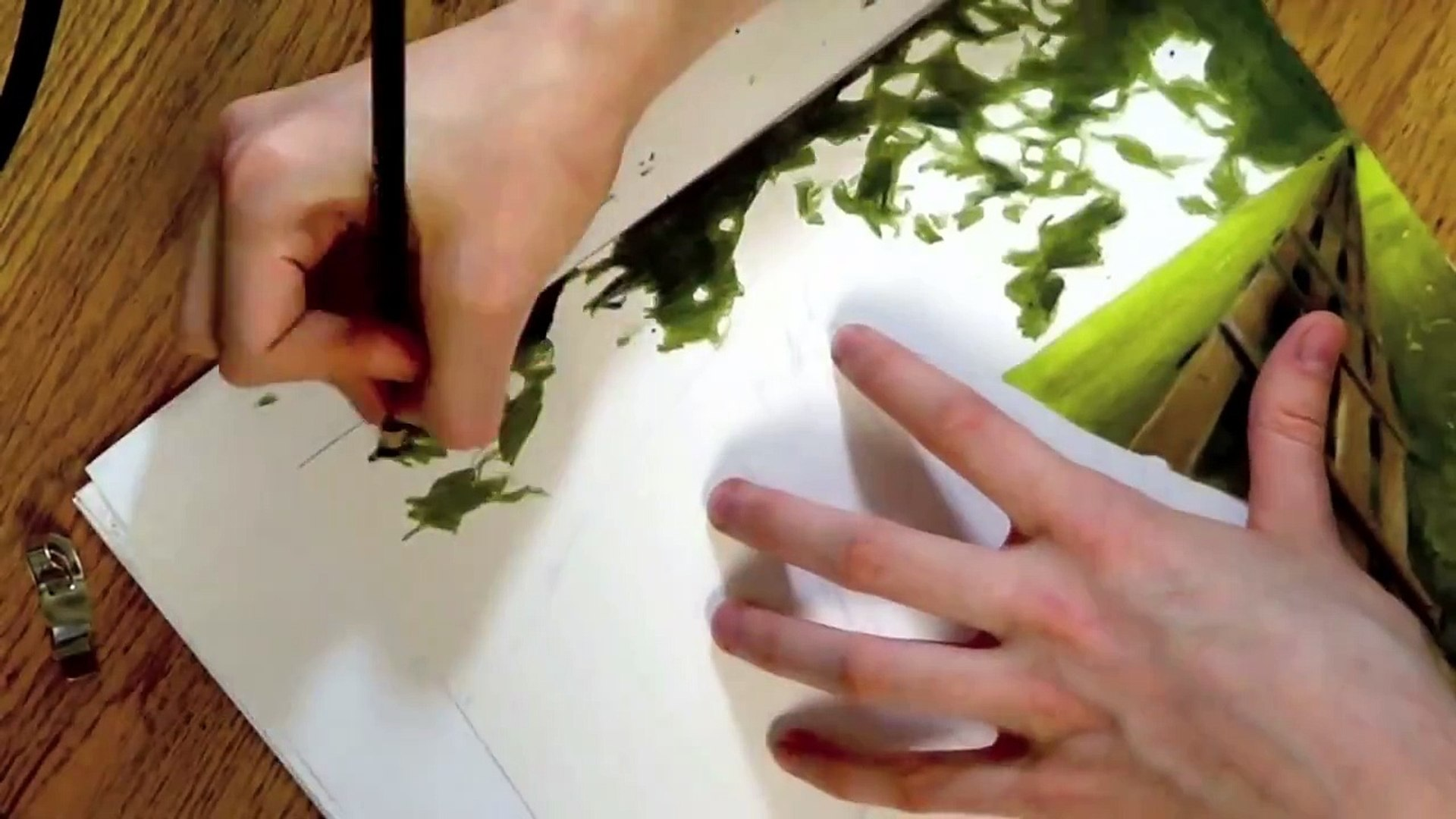 Realistic Colored Pencil Drawing Of A Horse Video Dailymotion