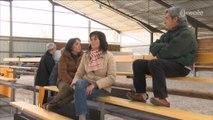 Equitation : Les coulisses d'une vente amiable de chevaux