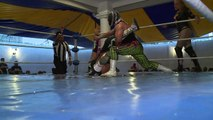 Transvestites wrestle for place in Mexican lucha libre