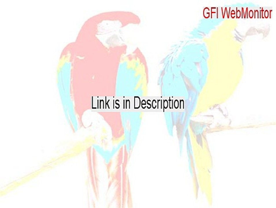 gfi webmonitor 2013 license key