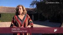 II Congreso del Vino Castilla La Mancha - Cospedal visita la Bodega Romaila