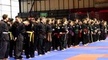 Arts Martiaux Vietnamiens Traditionnels / Championnats de France 2015