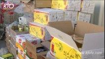 Erbil : 500 colis alimentaires pour les déplacés