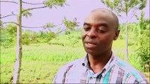 AFRICA NEWS ROOM du 16/03/15 - Afrique - La recherche agronomique au Rwanda et au Burkina Faso - partie 2