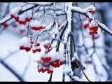 Russian Winter (The Four Seasons, Antonio Vivaldi)