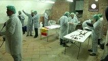 Investigadores confirman el hallazgo de los restos de Miguel de Cervantes