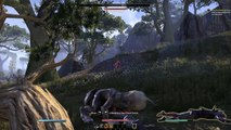 Templar Grind spot 23-25 - video dailymotion