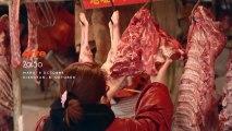 La viande in vitro bientôt dans nos assiettes ?