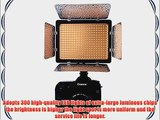 Bestlight? LED-D300 Dimmable LED Camera / Video Light with Two Color Temperature Filter for