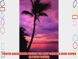 Printed Photography Beach Sunset Background Titanium Cloth TC388 Backdrop 5'x6' Ft (60x80)