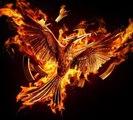 "THE HUNGER GAMES - Mockingjay: Part 2 – Teaser ""Remember"" (The Hunger Games Franchise Logo) [VO|HD]"