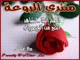 ahmad calls marwa 2