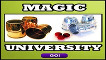 Easy to Learn Magic Tricks for Aspiring Magicians
