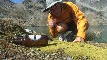 Balayeur des cimes - La Nouvelle Zélande, entre Monts et Mers - 2/3