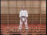 Shito Ryu Kata vol.1 Pinan, Kata & Bunkai