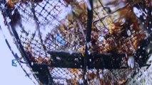 Thalassa - La mer dans tous ses états : Pêcheurs de l'extrême
