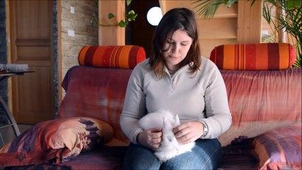 Garde d'animaux entre particuliers, échange de lapin de Nadège dans le Morbihan