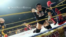 Mexican wrestler Perro Aguayo died after 619 by Rey Mysterio.