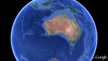 12 Whales Die After Stranding Along Australian Breakwater Wall