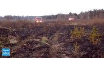 Camp de Mailly : 20  hectares de friches partent en fumée