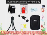 Must Have Accessory Kit for Sony DSC-HX5V DSC-H70 DSC-HX7V DSC-HX9V DSC-H90 DSC-HX30V DSC-HX20V