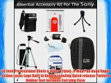 Essential Accessories Kit for Sony Cyber-Shot DSC-HX5V DSC-H70 DSC-HX7V DSC-HX9V DSC-H90 DSC-HX30V