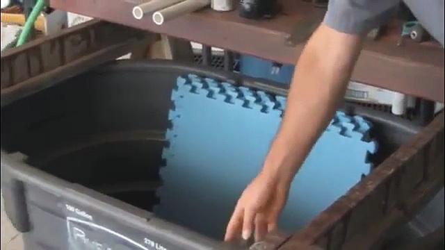 Aquaponics 4 You The Best Aquaponics System Setup And Beginning Aquaponics At Home