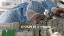 CNRS, dépasser les frontières