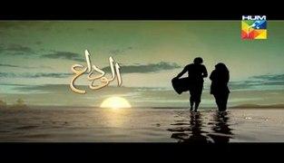 Alvida Episode 7 Full HUM TV Drama Mar 25 2015