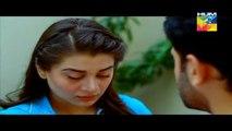 Sartaj Mera Tu Raaj Mera Episode 19 Full on HUM TV - 25th March 2015