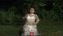 JAWANI DA HANAIR - SHEEZA DANCING QUEEN - NEW PAKISTANI MUJRA