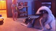 Bebek İle Köpeğin Oyunu :)