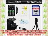 8GB Accessory Kit For Panasonic Lumix DMC-LZ20 DMC-LZ20K DMC-LZ20R DMC-LZ30 DMC-LZ30K Digital