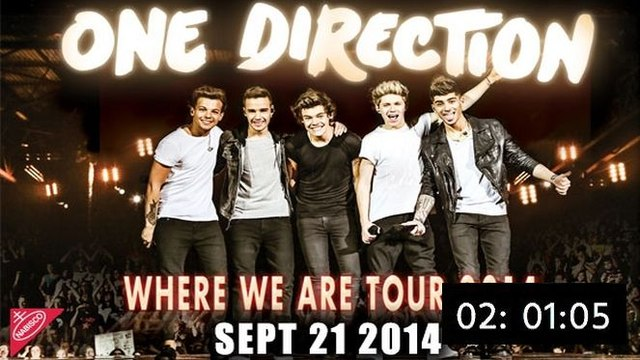 One Direction: Where We Are - The Concert