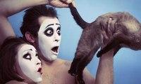 The 50  Weirdest Photos On The Internet Compilation