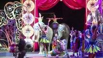 Les éléphants du cirque Barnum tireront leur révérence en 2018