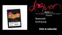 Buzzcocks - E S P  [Live]