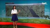 El-Arabiya spikeri Hava Durumu Sunarken Yere Çakıldı