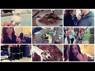 Bobbi Brown Event, Wohnungssuche, Hund, Fake Profil, Hater, Pakete, Mona | FMW #3